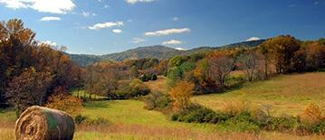 Amelia County Farms for Sale