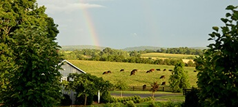 Bath County Farms for Sale
