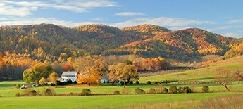 Nelson County Farms for Sale