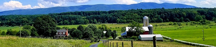 Rockingham County Farms for Sale