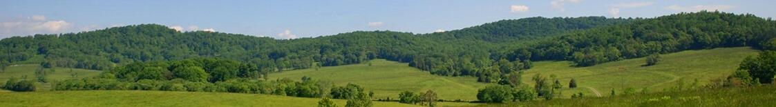 Richmond Area Farms for Sale