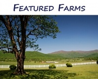 Featured VA Farms for Sale