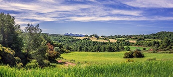 Caroline County Farms for Sale
