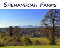 Shenandoah Farms for Sale