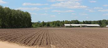 Greene County Farms for Sale - Virginia Farms for Sale
