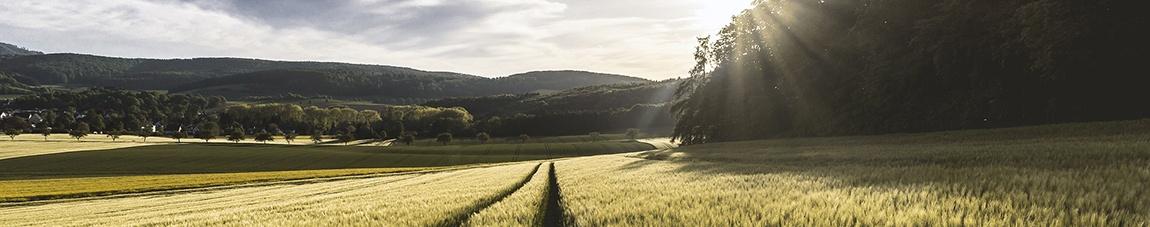 Mountain Farmland in Virginia
